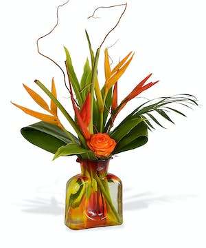 Tropicals in Collectable glassware