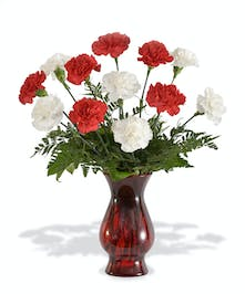 Red and White Carnations in red vase