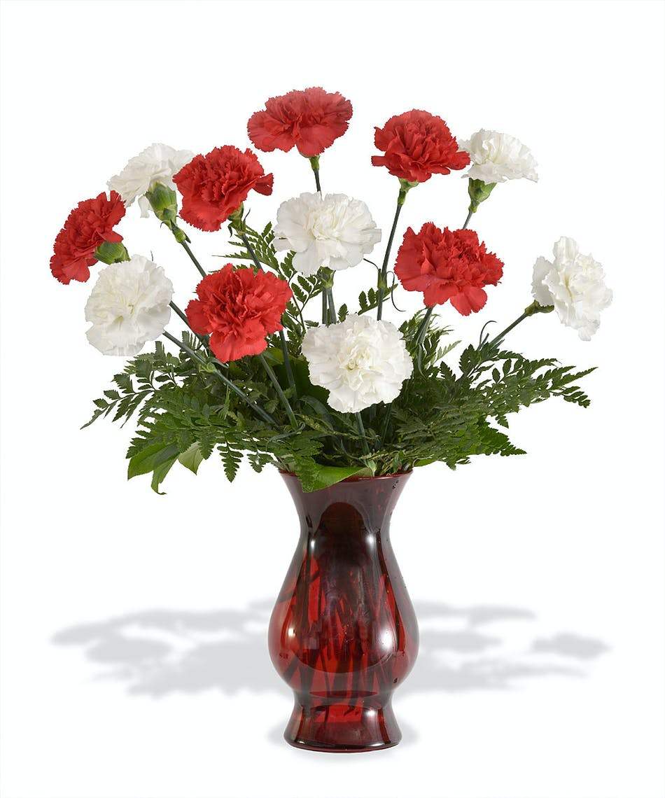 About Red And White Carnations From Walter Knoll Florist In Saint