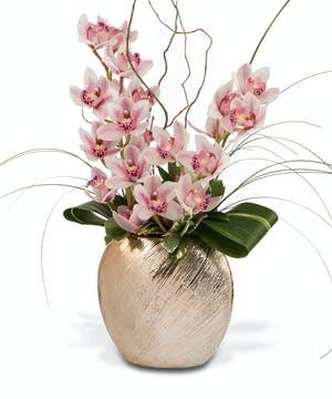Brushed gold container with mini Cymbidiums