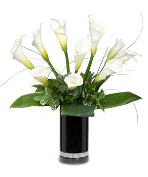 White Calla Lilies in black cylinder vase