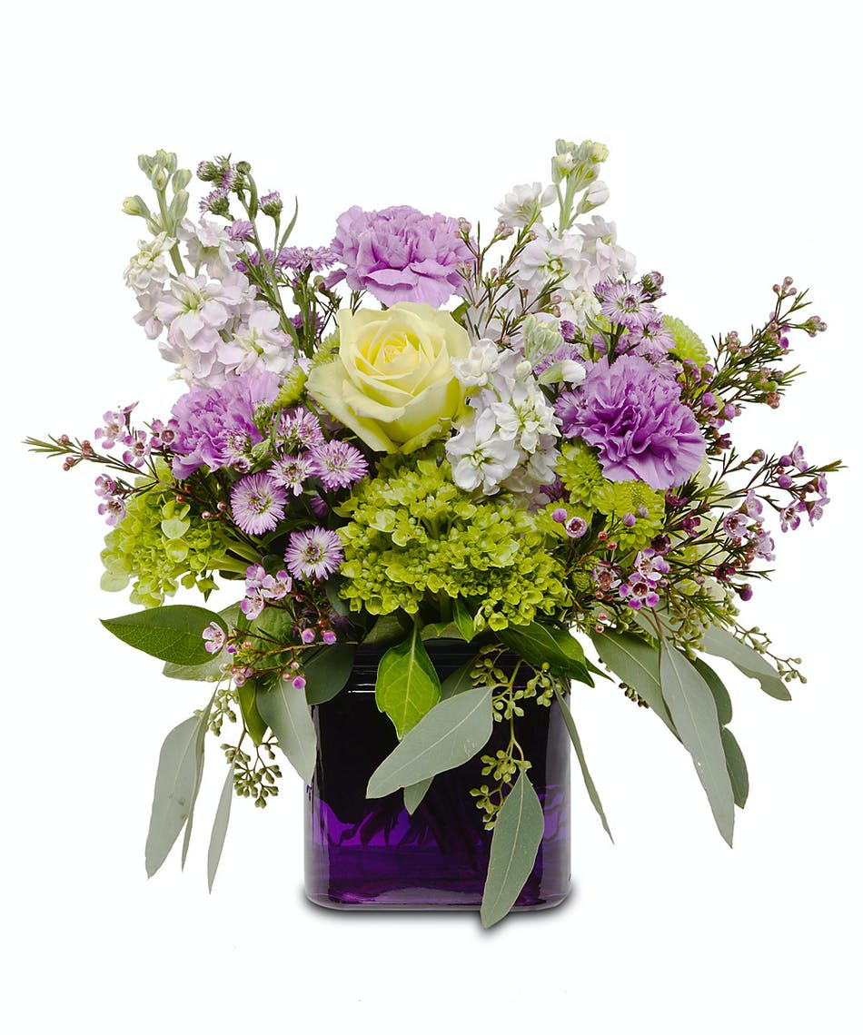 Your Best Friend Deserves The Best Flowers Walter Knoll Florist