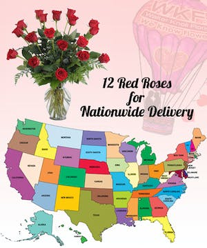12 Red Roses for delivery out of the Saint Louis metro area.