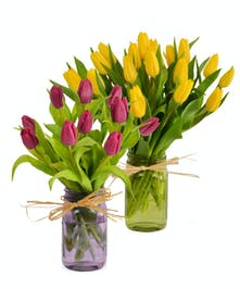 Ten or Twenty Tulips