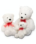 Plush White Teddy Bears