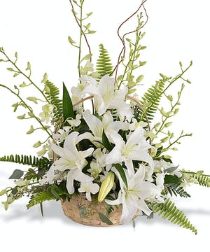 White Lilies & Orchids