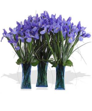 A topselling mono-botanical arrangement