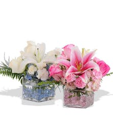 Lilies, Carnations and Roses in glass cube