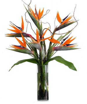 Walter Knoll Florist That's Mister Bird of Paradise to You Bouquet