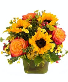 Walter Knoll Florist Roses and Sunshine Bouquet