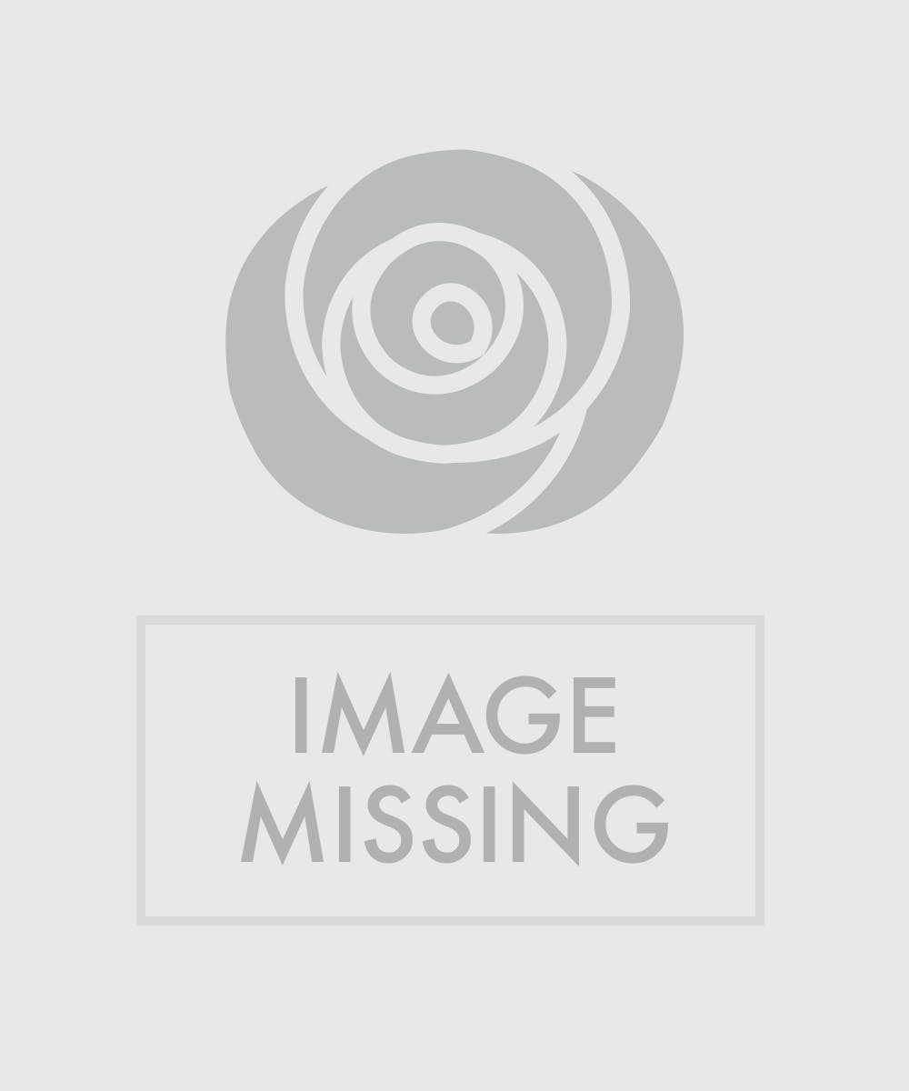 About angel planters from walter knoll florist in saint for Praying angel plant