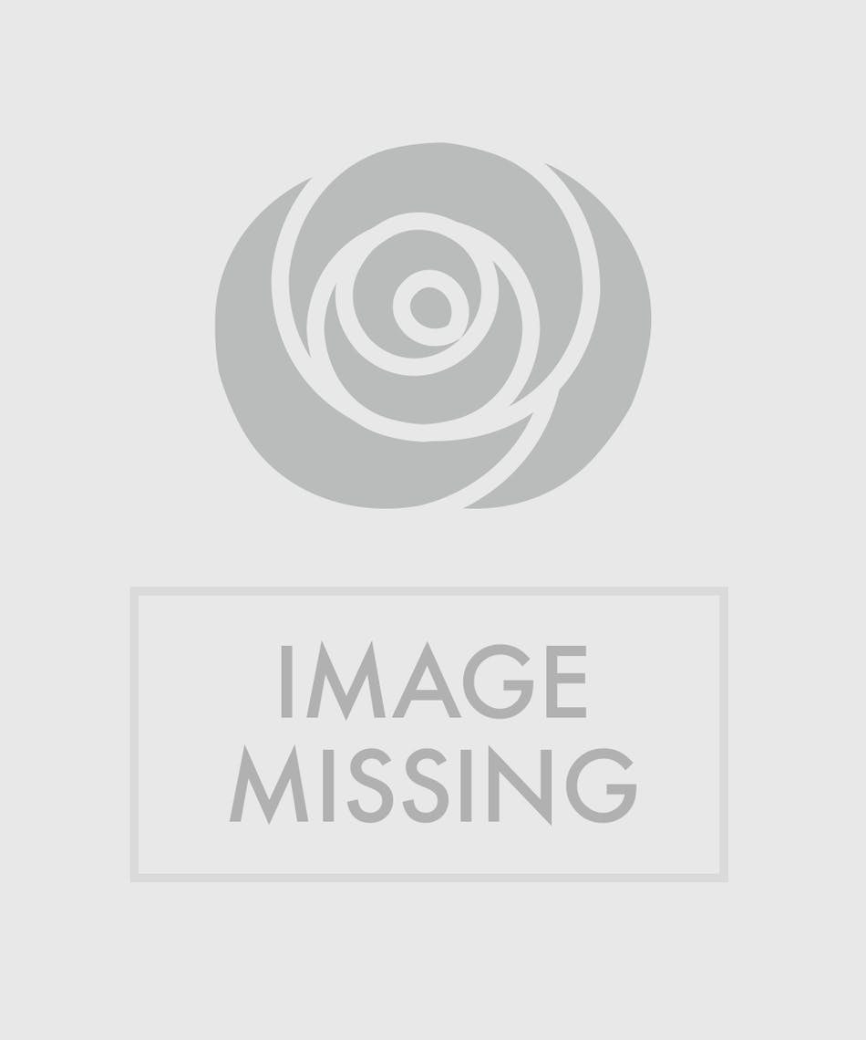 About Angel Planters From Walter Knoll Florist In Saint Louis Mo