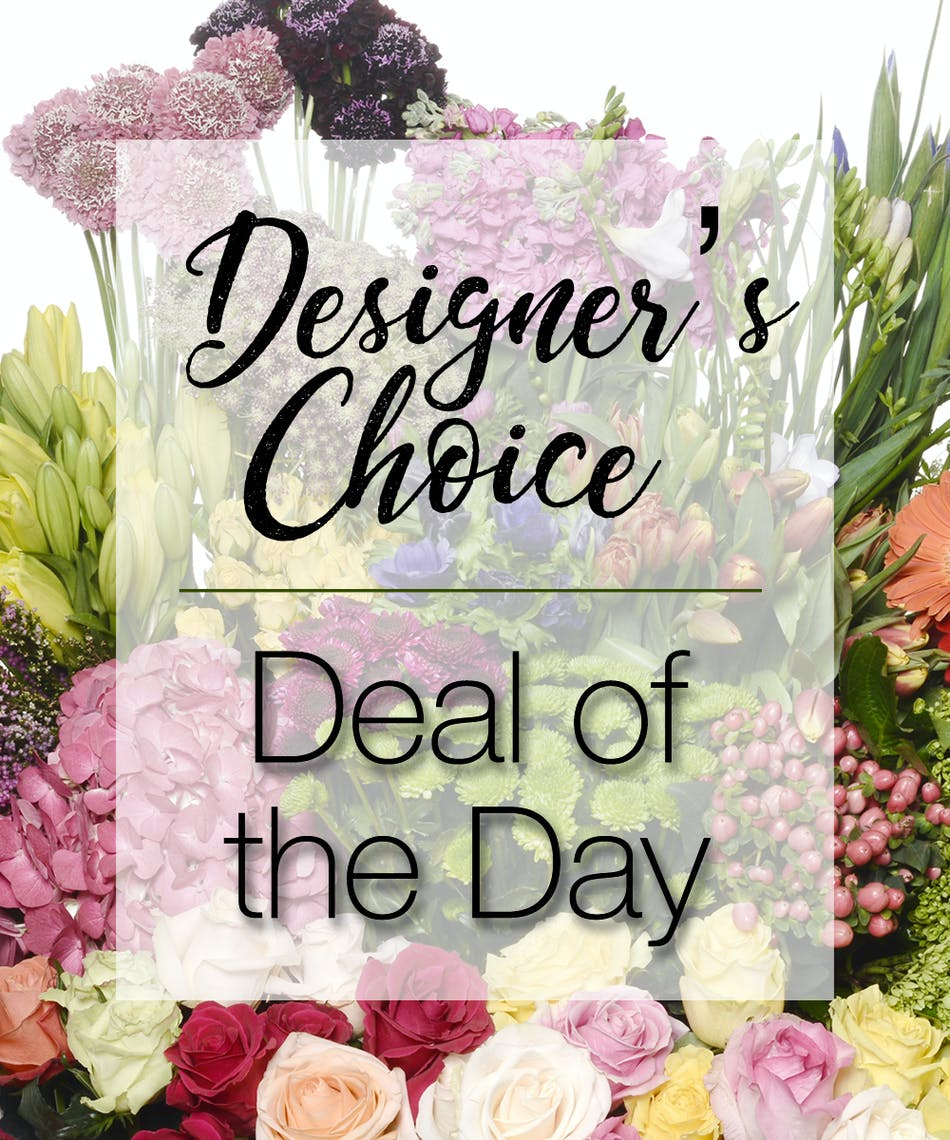 About Deal Of The Day From Walter Knoll Florist In Saint Louis Mo