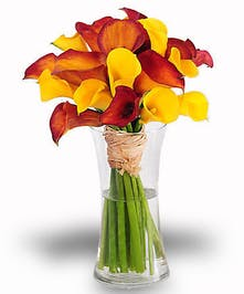 beautiful bouquet of calla lilies