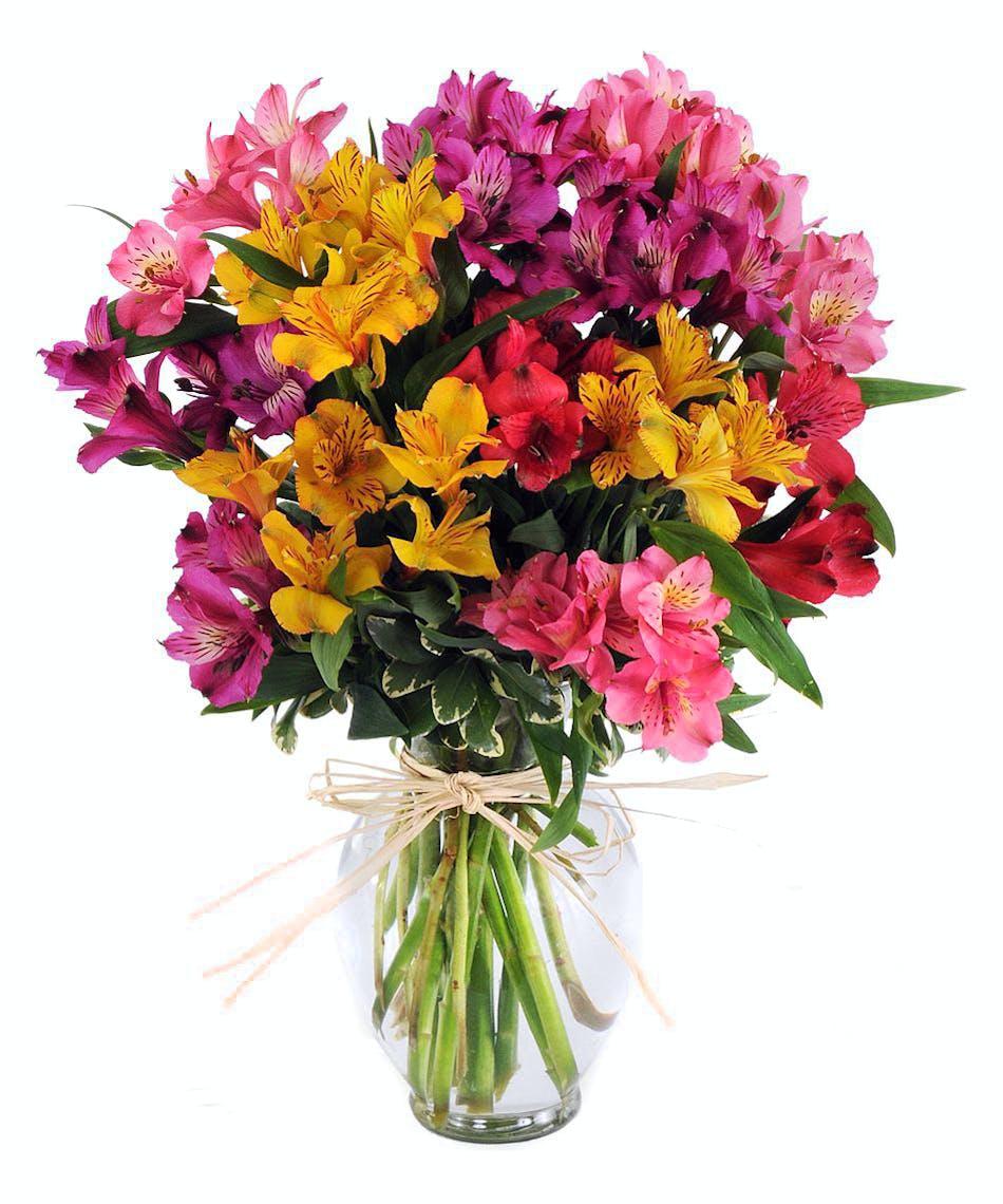 About alstromeria kaleidoscope vibrant long lasting peruvian lilies walter knoll florist alstromeria bouquet izmirmasajfo