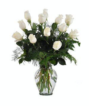 Beautiful Hand Picked Ecuadorian White Roses