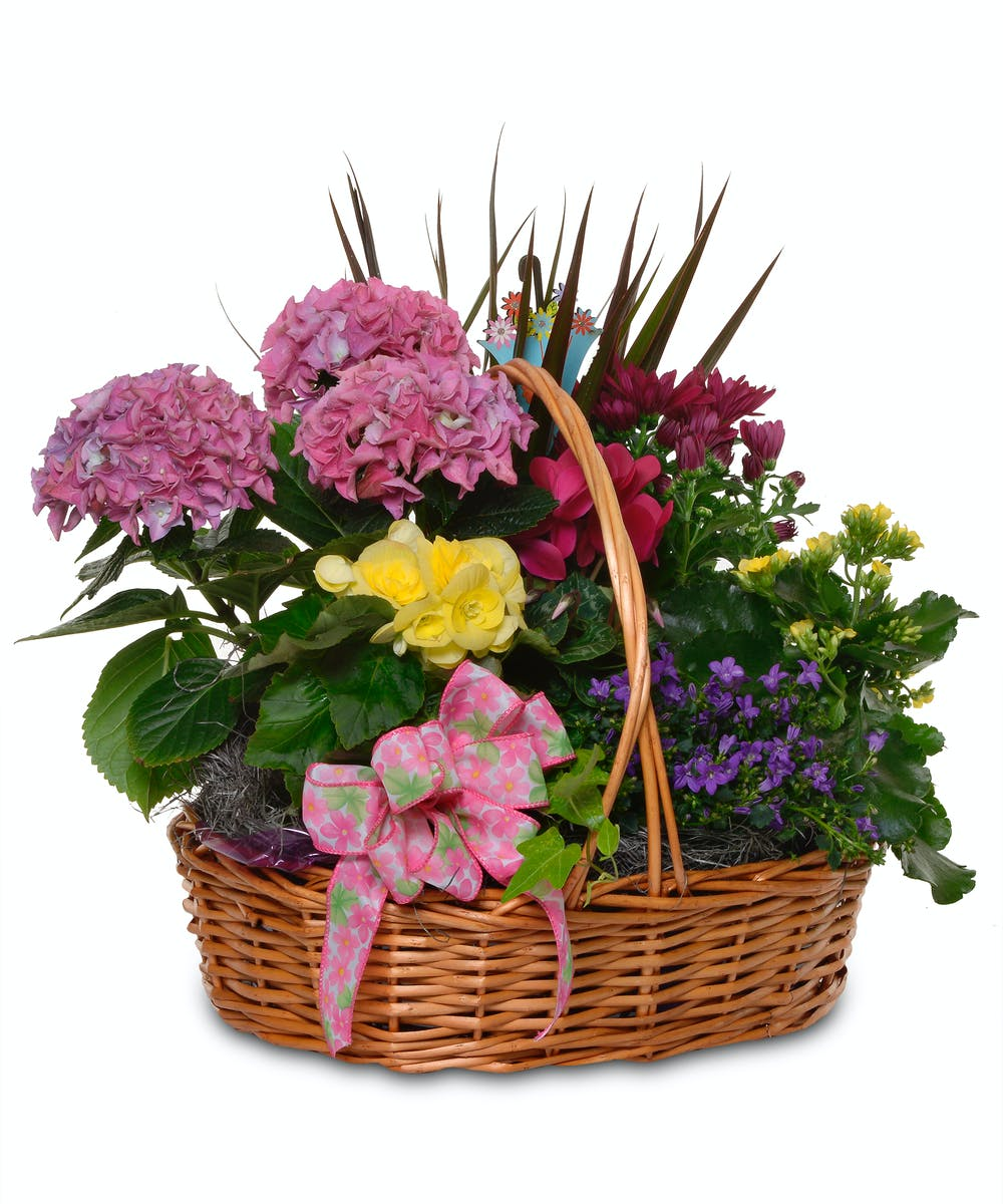 About Mom S Blooming Basket From Walter Knoll Florist In Saint