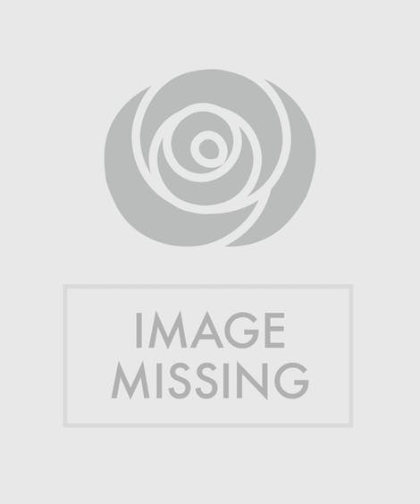 Flower Delivery to Covidien Medical Products | St Louis MO