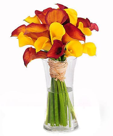 About Mango Calla Lily Bouquet Rich Vinrant Color From Your