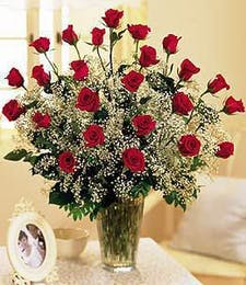 24 Red Roses w/Babies Breath