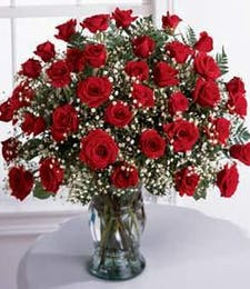 Thirty-six Red Roses with Babies' Breath