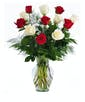 6 Red and 6 White Roses